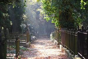 Begraafplaats Fangmanweg