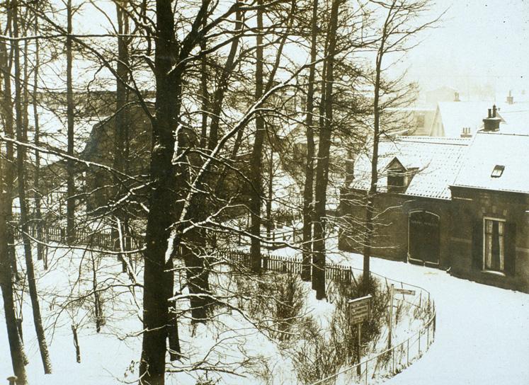Zuidwesthoek van het perceel Berg en Dalzicht bij de Poststraat.