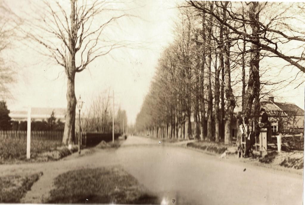 """De Utrechtseweg nabij """"de Koude Herberg"""". Foto uit 1889."""