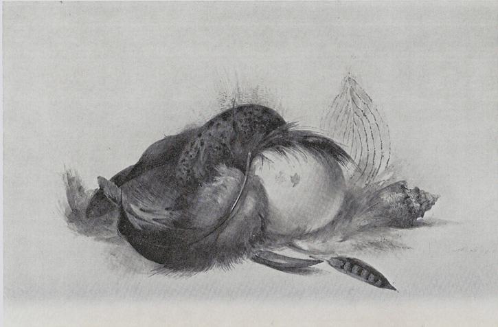 Tekening van Maria Vos uit 1844.