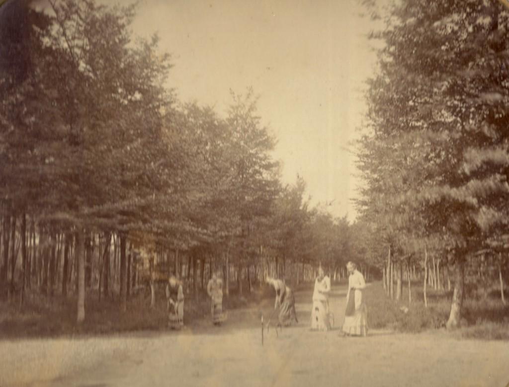 Een elegant gezelschap beoefent het croquetspel op een der lanen.