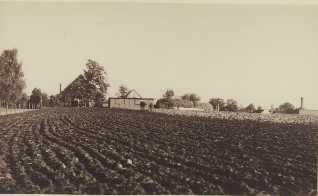 De akker waar in later jaren de Julianaschool verscheen en een weilandje ten zuiden ervan.