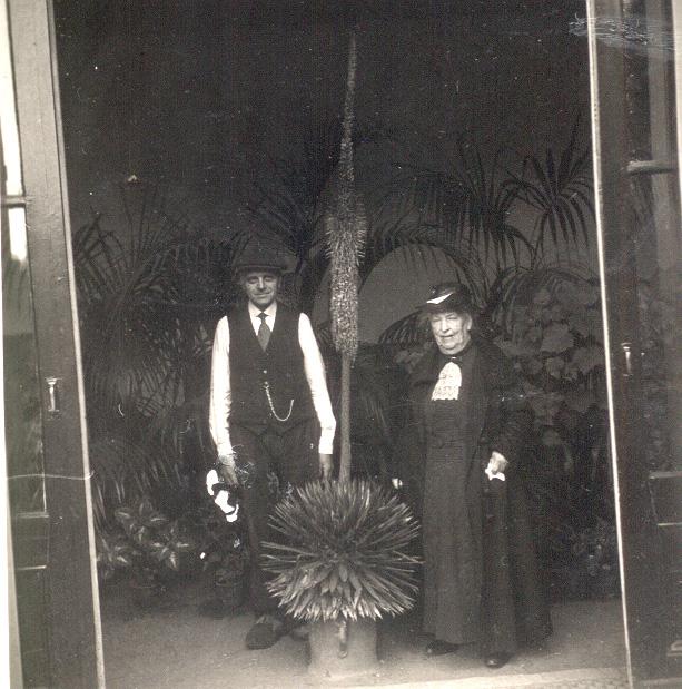 """Tuinman Van Leeuwen met Cateau van Eeghen in de bloemenkas van """"de Pietersberg""""."""