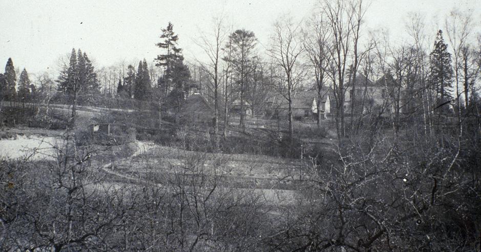"""De villa """"Bergoord"""" gezien vanaf de Weverstraat. De eigenaar, Hooijer, bewoonde het boerderijtje achter de villa en verhuurde het huis """"Bergoord"""". Zo woonden er van 1912 tot 1923 de familie De Klark. Links op de achtergrond de Oude Begraafplaats, achter de heg."""