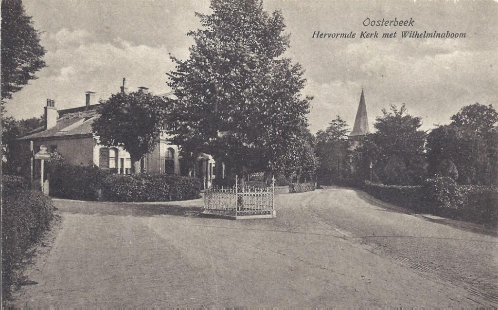 Enige meters westelijker met de Wilhelminalinde vol in beeld.
