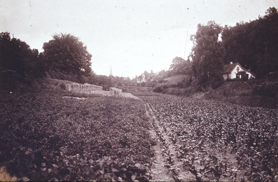 Gezicht op het Zweiersdal noordwaarts vanaf de plek van de huidige Dam.